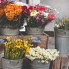 David Saunders Floral Sundries Ltd avatar